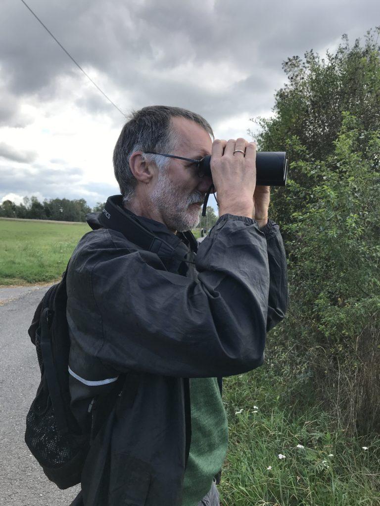 birding in tuttlingen