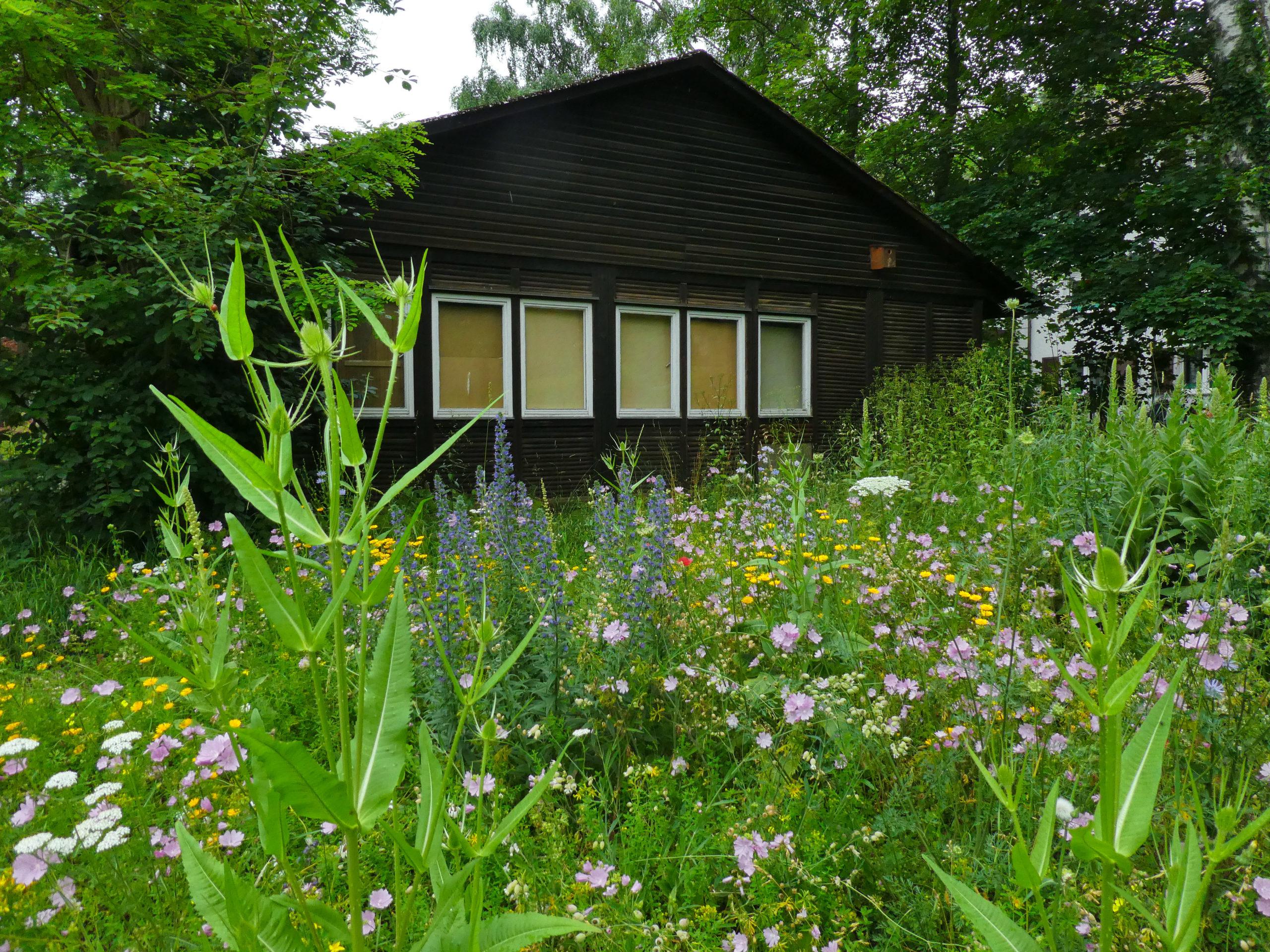 Umweltzentrum_Tuttlingen_Bund_6